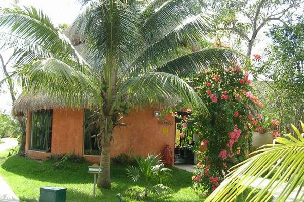 2_yucatan_all_inclusive_cozumel_hut