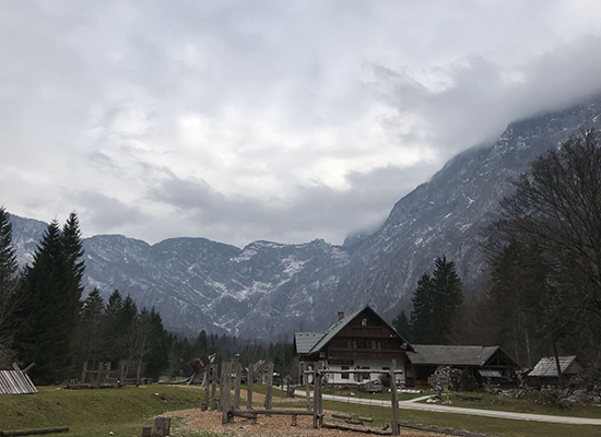 LakeBohinjCountryside